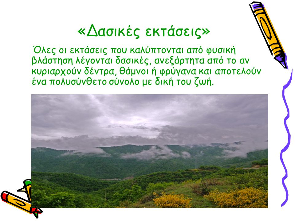 «Δασικές εκτάσεις» Όλες οι εκτάσεις που καλύπτονται από φυσική βλάστηση λέγονται δασικές, ανεξάρτητα από το αν κυριαρχούν δέντρα, θάμνοι ή φρύγανα και