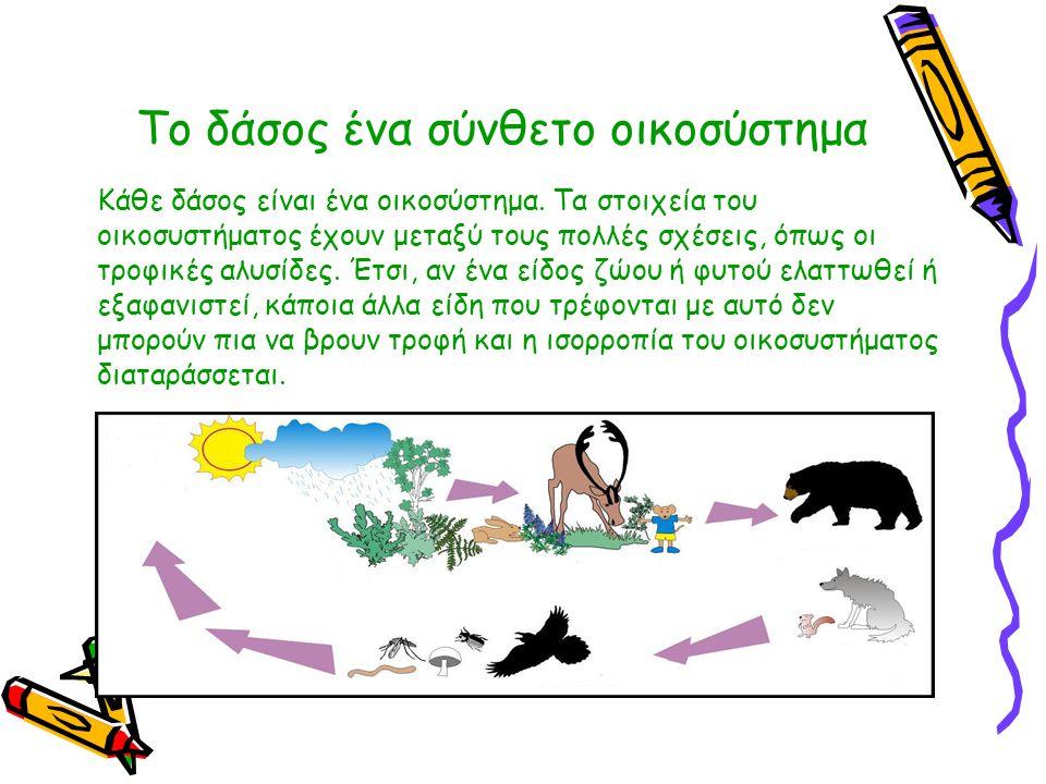 Το δάσος ένα σύνθετο οικοσύστημα Κάθε δάσος είναι ένα οικοσύστημα. Τα στοιχεία του οικοσυστήματος έχουν μεταξύ τους πολλές σχέσεις, όπως οι τροφικές α