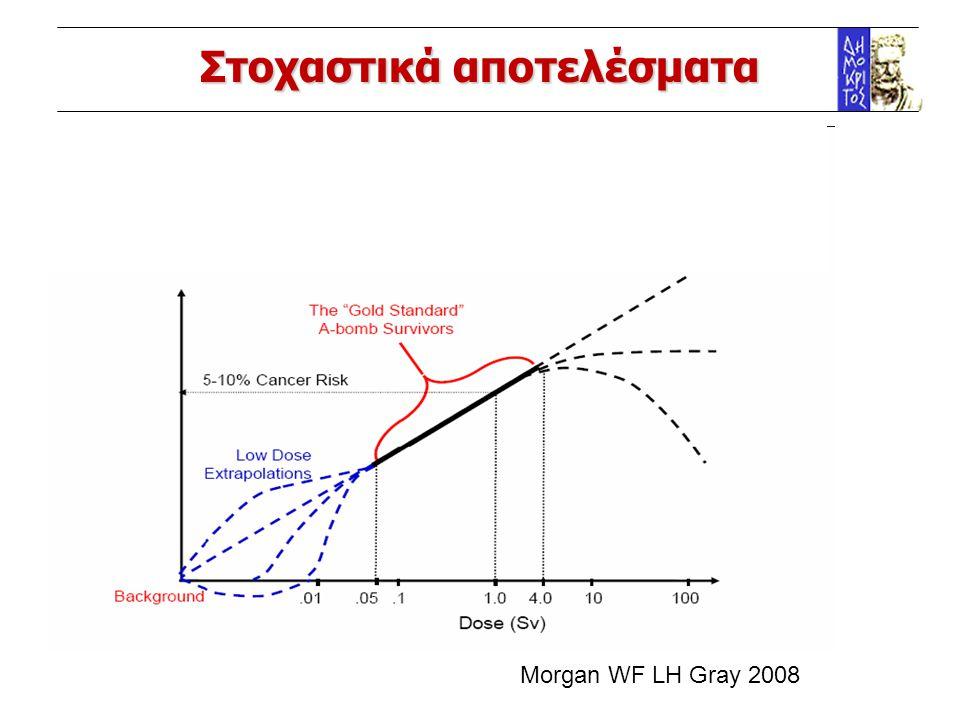 Στοχαστικά αποτελέσματα Morgan WF LH Gray 2008