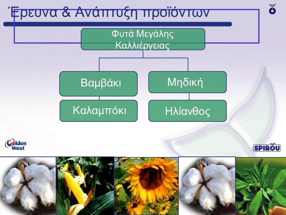 Έρευνα & Ανάπτυξη προϊόντων Φυτά Μεγάλης Καλλιέργειας Βαμβάκι Καλαμπόκι Sunflower Μηδική Ηλίανθος