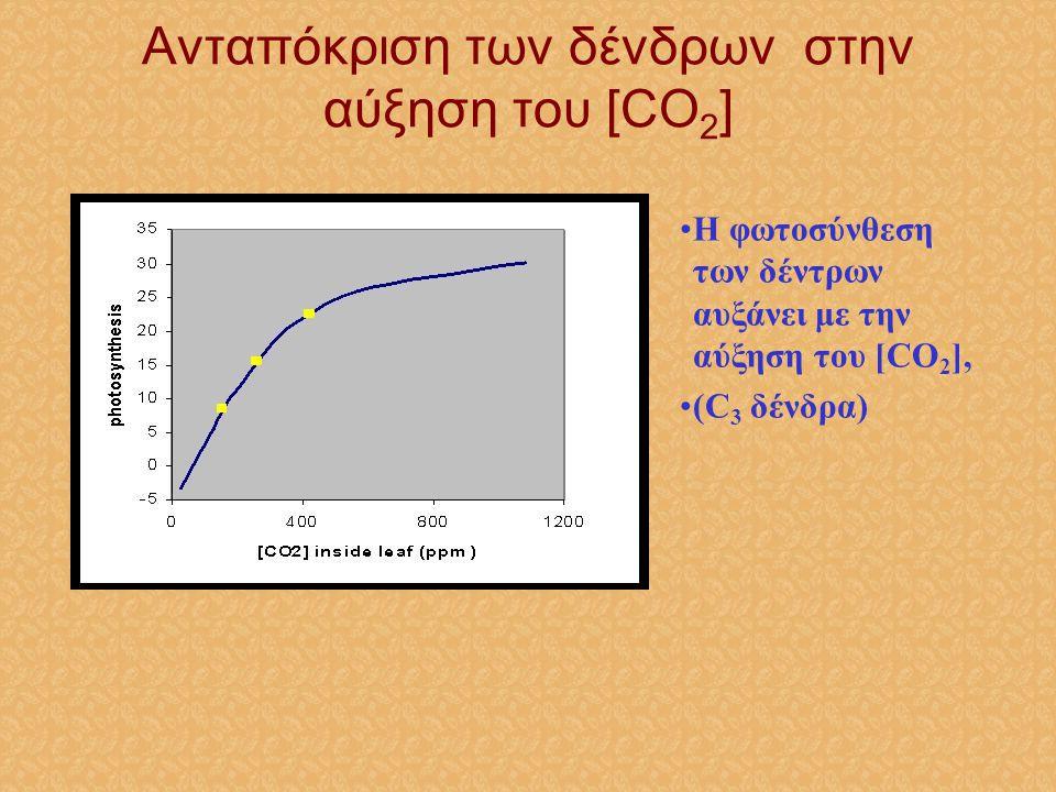 •Η φωτοσύνθεση των δέντρων αυξάνει με την αύξηση του [CO 2 ], •(C 3 δένδρα) Ανταπόκριση των δένδρων στην αύξηση του [CO 2 ]