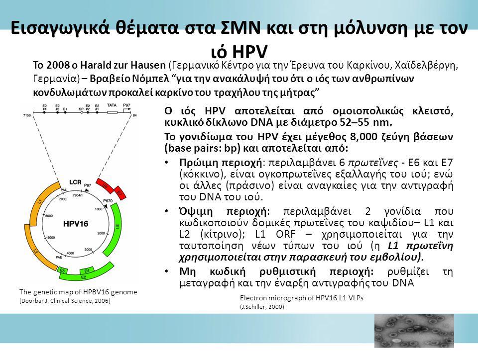 Ο ιός HPV αποτελείται από ομοιοπολικώς κλειστό, κυκλικό δίκλωνο DNA με διάμετρο 52–55 nm.