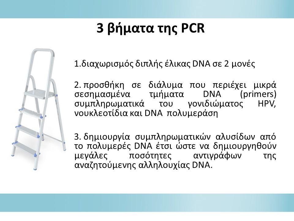 1.διαχωρισμός διπλής έλικας DNA σε 2 μονές 2.