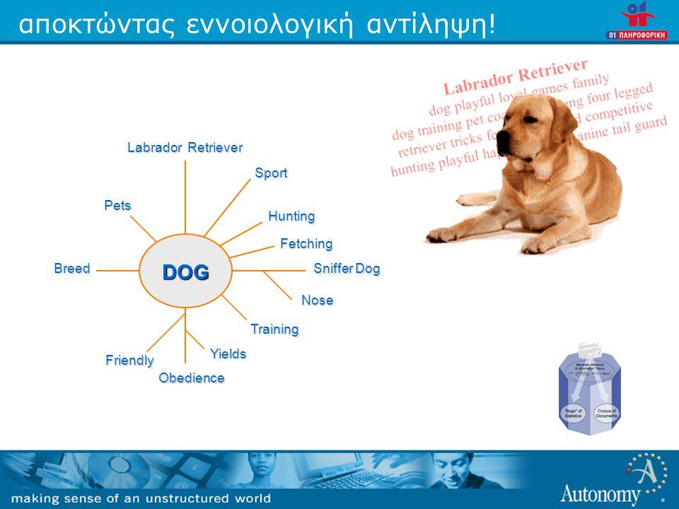 αποκτώντας εννοιολογική αντίληψη! Labrador Retriever Sniffer Dog Breed Friendly Obedience Yields Nose Hunting Sport Fetching Pets Training DOG
