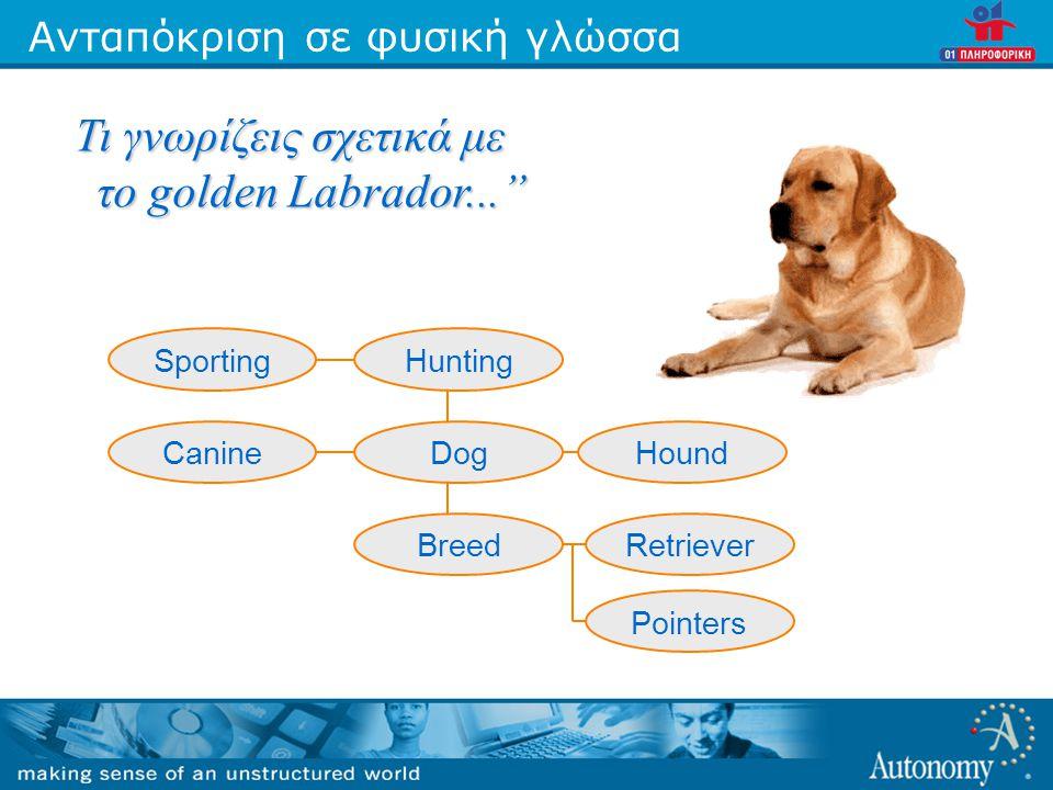 """Ανταπόκριση σε φυσική γλώσσα Τι γνωρίζεις σχετικά με το golden Labrador..."""" SportingHunting CanineHoundDog RetrieverBreed Pointers"""
