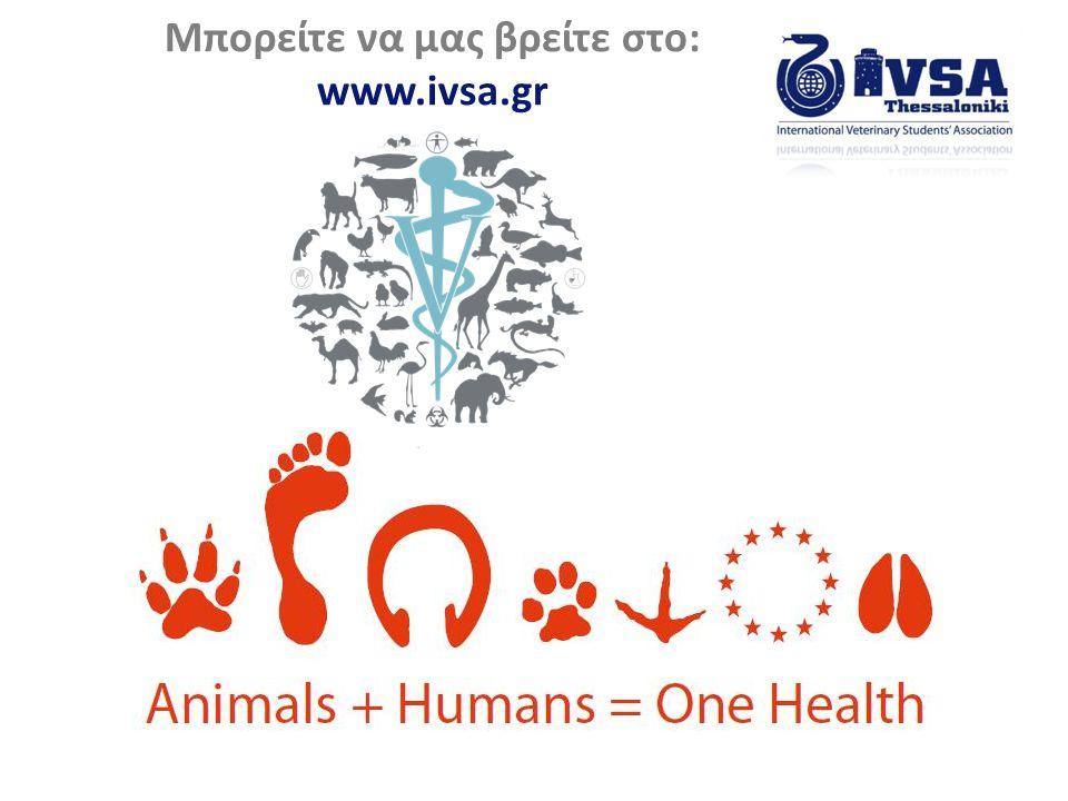 Μπορείτε να μας βρείτε στο: www.ivsa.gr