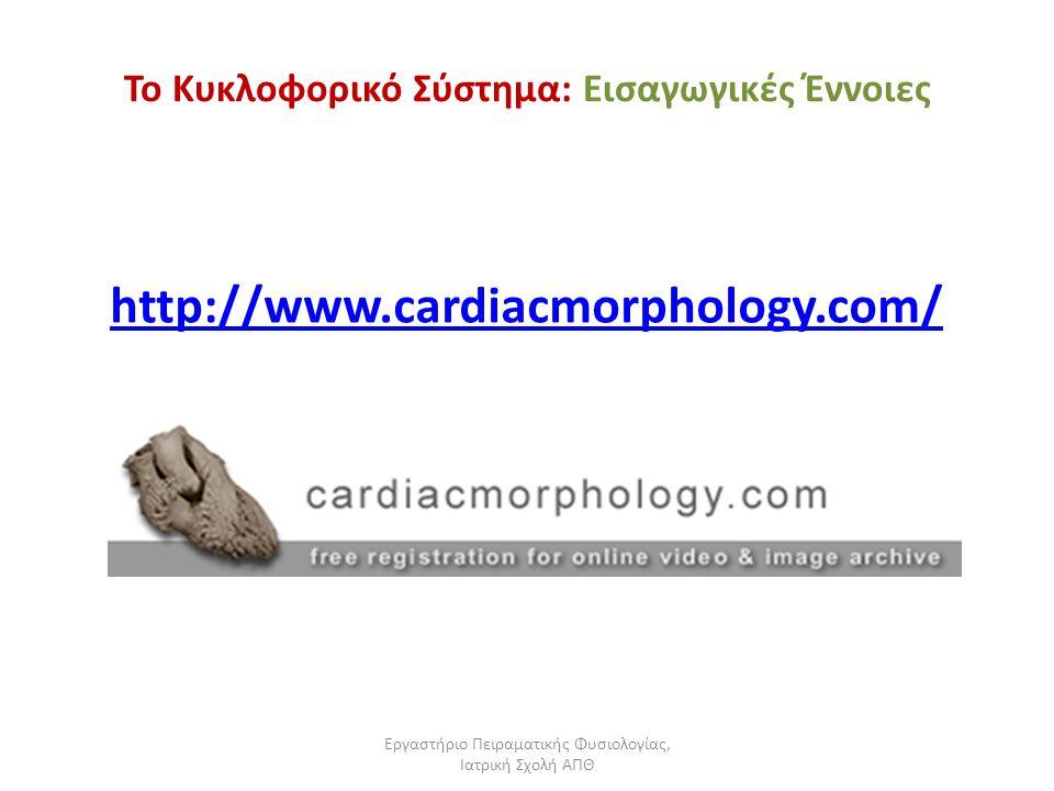 Εργαστήριο Πειραματικής Φυσιολογίας, Ιατρική Σχολή ΑΠΘ Το Κυκλοφορικό Σύστημα: Εισαγωγικές Έννοιες http://www.cardiacmorphology.com/