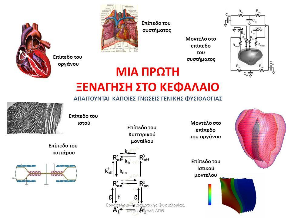 Εργαστήριο Πειραματικής Φυσιολογίας, Ιατρική Σχολή ΑΠΘ Το Κυκλοφορικό Σύστημα: Εισαγωγικές Έννοιες Η μεγάλη (ή «γενική» ή «σωματική» κυκλοφορία) περιλαμβάνει τη διαδρομή του αίματος από την αριστερή καρδία, με την αορτή, στην περιφέρεια του σώματος και την επάνοδο του, με την άνω και κάτω κοίλη φλέβα, στο δεξιό κόλπο