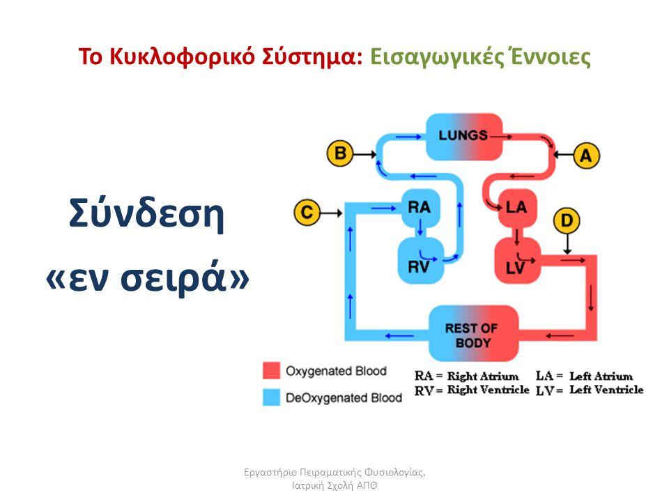 Εργαστήριο Πειραματικής Φυσιολογίας, Ιατρική Σχολή ΑΠΘ Το Κυκλοφορικό Σύστημα: Εισαγωγικές Έννοιες Σύνδεση «εν σειρά»