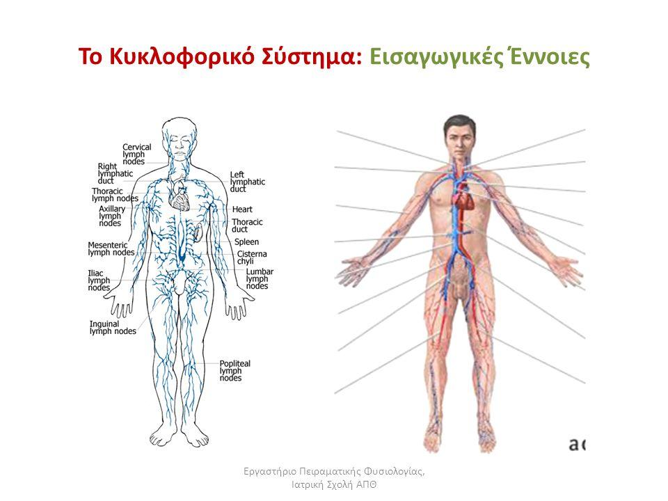 Εργαστήριο Πειραματικής Φυσιολογίας, Ιατρική Σχολή ΑΠΘ Το Κυκλοφορικό Σύστημα: Εισαγωγικές Έννοιες Το καρδιοαγγειακό σύστημα αποτελείται από την καρδιά και τα αγγεία