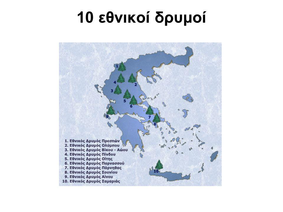 10 εθνικοί δρυμοί