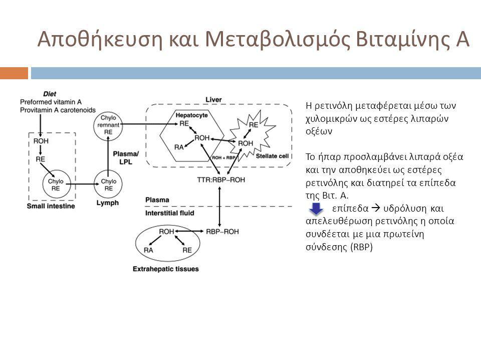 Αποθήκευση και Μεταβολισμός Βιταμίνης Α Η ρετινόλη μεταφέρεται μέσω των χυλομικρών ως εστέρες λιπαρών οξέων Το ήπαρ προσλαμβάνει λιπαρά οξέα και την α