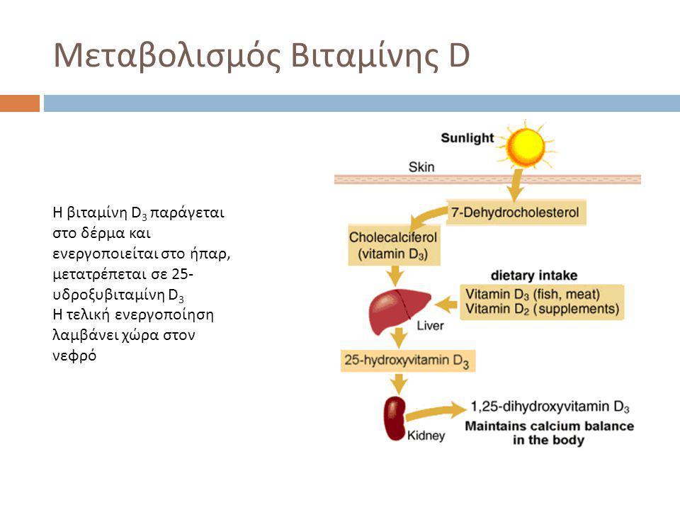 Μεταβολισμός Βιταμίνης D H βιταμίνη D 3 παράγεται στο δέρμα και ενεργοποιείται στο ήπαρ, μετατρέπεται σε 25- υδροξυβιταμίνη D 3 Η τελική ενεργοποίηση