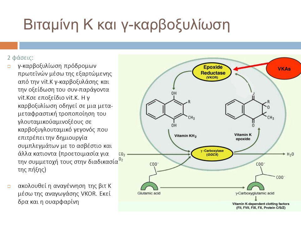 Βιταμίνη Κ και γ-καρβοξυλίωση 2 φάσεις:  γ-καρβοξυλίωση πρόδρομων πρωτεϊνών μέσω της εξαρτώμενης από την vit.K γ-καρβοξυλάσης και την οξείδωση του συν-παράγοντα vit.Kσε εποξείδιο vit.K.