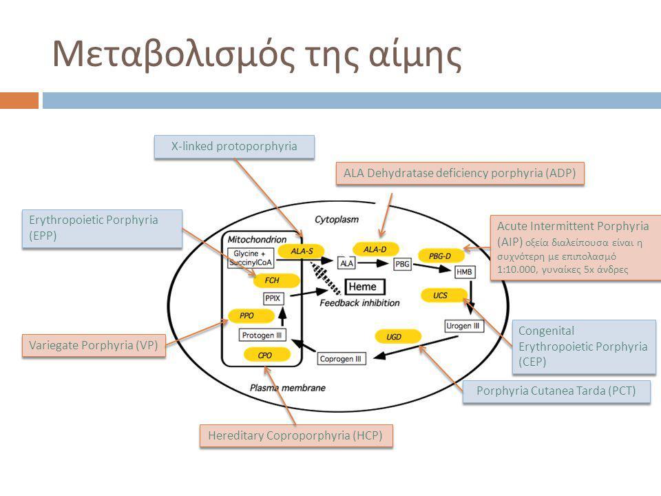 Μεταβολισμός της αίμης X-linked protoporphyria ALA Dehydratase deficiency porphyria (ADP) Acute Intermittent Porphyria (AIP) οξεία διαλείπουσα είναι η συχνότερη με επιπολασμό 1:10.000, γυναίκες 5x άνδρες Porphyria Cutanea Tarda (PCT) Variegate Porphyria (VP) Hereditary Coproporphyria (HCP) Erythropoietic Porphyria (EPP) Congenital Erythropoietic Porphyria (CEP)