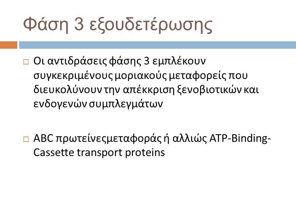 Φάση 3 εξουδετέρωσης  Οι αντιδράσεις φάσης 3 εμπλέκουν συγκεκριμένους μοριακούς μεταφορείς που διευκολύνουν την απέκκριση ξενοβιοτικών και ενδογενών συμπλεγμάτων  ABC πρωτείνεςμεταφοράς ή αλλιώς ATP-Binding- Cassette transport proteins