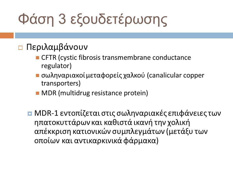 Φάση 3 εξουδετέρωσης  Περιλαμβάνουν  CFTR (cystic fibrosis transmembrane conductance regulator)  σωληναριακοί μεταφορείς χαλκού (canalicular copper transporters)  MDR (multidrug resistance protein)  MDR-1 εντοπίζεται στις σωληναριακές επιφάνειες των ηπατοκυττάρων και καθιστά ικανή την χολική απέκκριση κατιονικών συμπλεγμάτων (μετάξυ των οποίων και αντικαρκινικά φάρμακα)