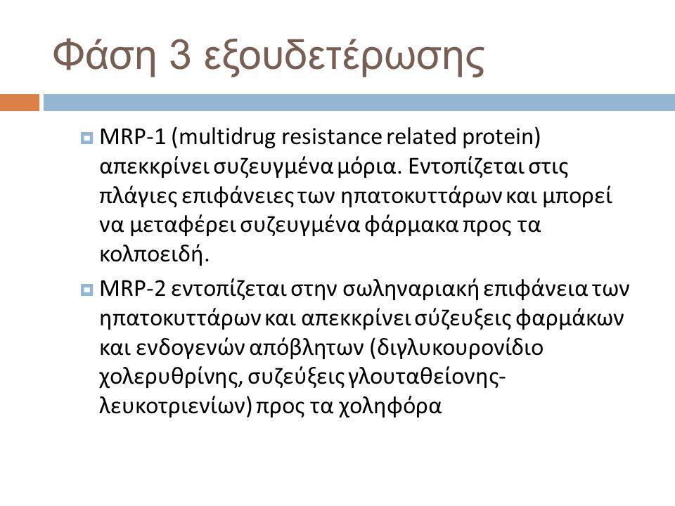 Φάση 3 εξουδετέρωσης  MRP-1 (multidrug resistance related protein) απεκκρίνει συζευγμένα μόρια.