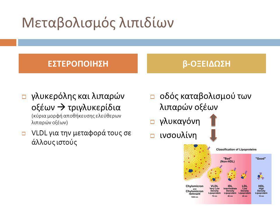 Μεταβολισμός λιπιδίων  γλυκερόλης και λιπαρών οξέων  τριγλυκερίδια (κύρια μορφή αποθήκευσης ελεύθερων λιπαρών οξέων)  VLDL για την μεταφορά τους σε άλλους ιστούς  οδός καταβολισμού των λιπαρών οξέων  γλυκαγόνη  ινσουλίνη ΕΣΤΕΡΟΠΟΙΗΣΗβ-ΟΞΕΙΔΩΣΗ