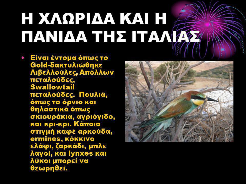Η ΧΛΩΡΙΔΑ ΚΑΙ Η ΠΑΝΙΔΑ ΤΗΣ ΙΤΑΛΙΑΣ •Είναι έντομα όπως το Gold-δακτυλιώθηκε Λιβελλούλες, Απόλλων πεταλούδες, Swallowtail πεταλούδες. Πουλιά, όπως το όρ
