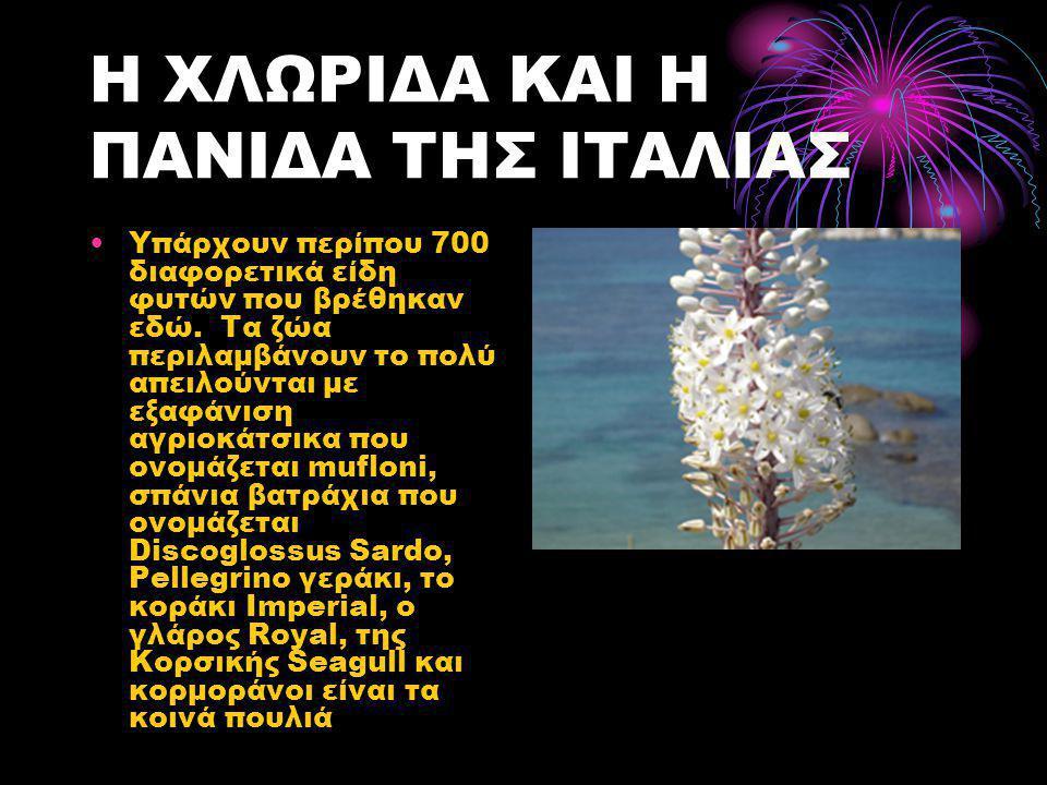 Η ΧΛΩΡΙΔΑ ΚΑΙ Η ΠΑΝΙΔΑ ΤΗΣ ΙΤΑΛΙΑΣ •Υπάρχουν περίπου 700 διαφορετικά είδη φυτών που βρέθηκαν εδώ.