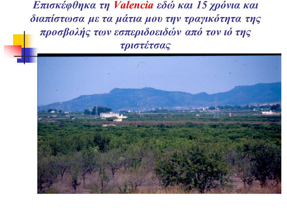 Επισκέφθηκα τη Valencia εδώ και 15 χρόνια και διαπίστωσα με τα μάτια μου την τραγικότητα της προσβολής των εσπεριδοειδών από τον ιό της τριστέτσας  VALENCIA