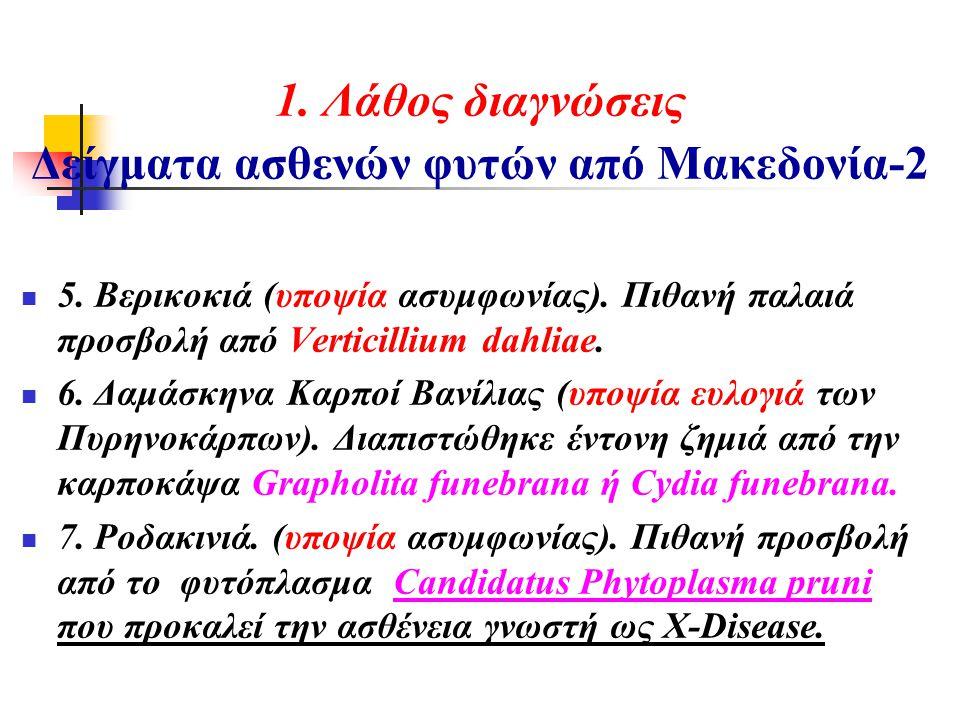 1. Λάθος διαγνώσεις Δείγματα ασθενών φυτών από Μακεδονία-2  5. Βερικοκιά (υποψία ασυμφωνίας). Πιθανή παλαιά προσβολή από Verticillium dahliae.  6. Δ