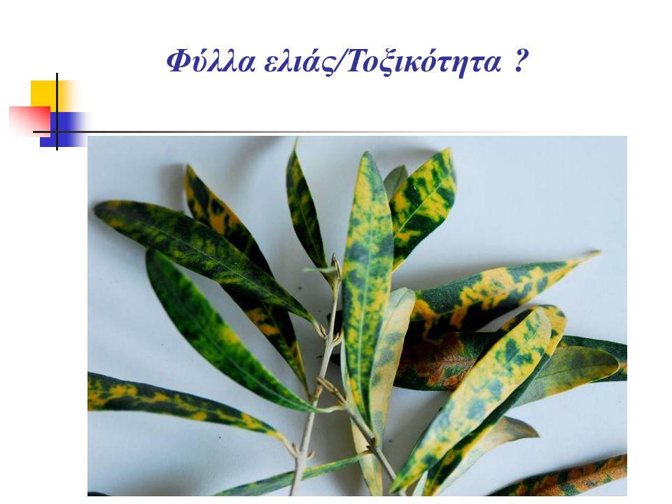 Φύλλα ελιάς/Τοξικότητα ?
