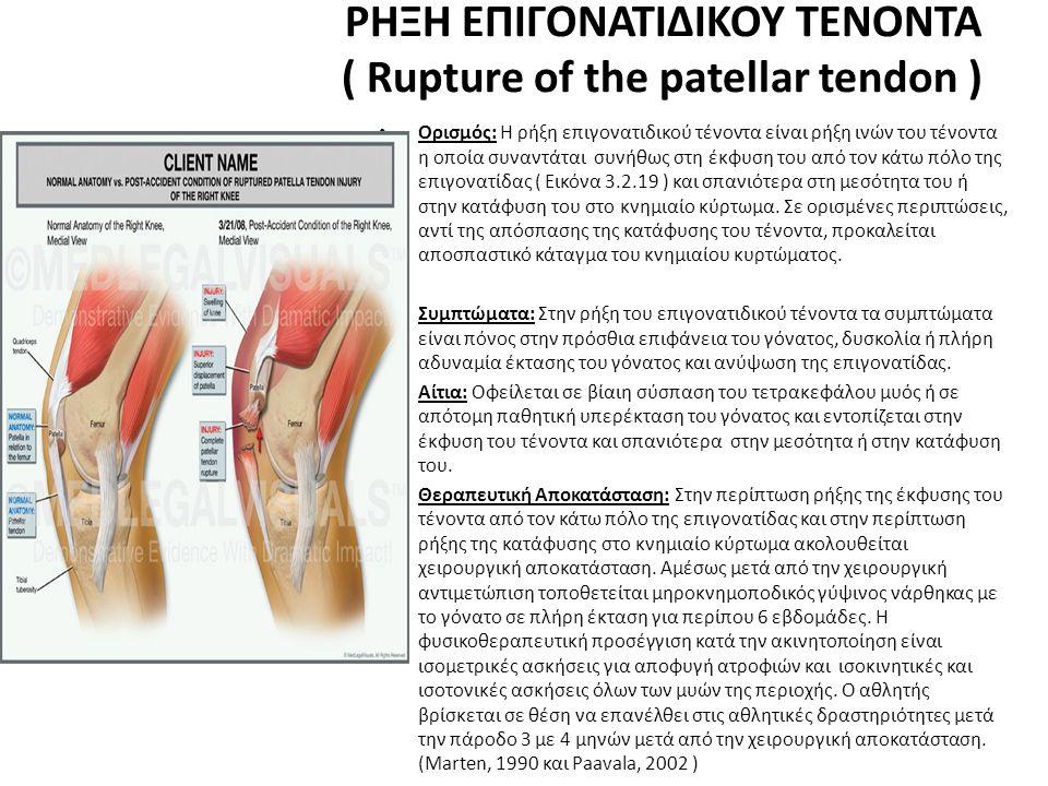 ΡΗΞΗ ΕΠΙΓΟΝΑΤΙΔΙΚΟΥ ΤΕΝΟΝΤΑ ( Rupture of the patellar tendon ) • Ορισμός: Η ρήξη επιγονατιδικού τένοντα είναι ρήξη ινών του τένοντα η οποία συναντάται συνήθως στη έκφυση του από τον κάτω πόλο της επιγονατίδας ( Εικόνα 3.2.19 ) και σπανιότερα στη μεσότητα του ή στην κατάφυση του στο κνημιαίο κύρτωμα.