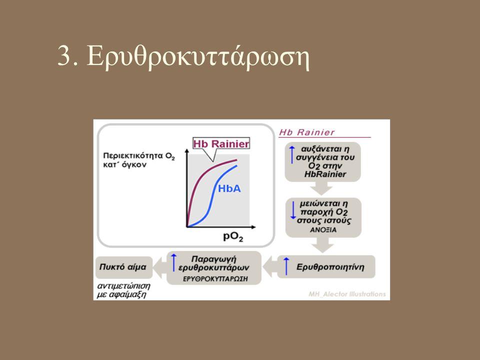 3. Ερυθροκυττάρωση