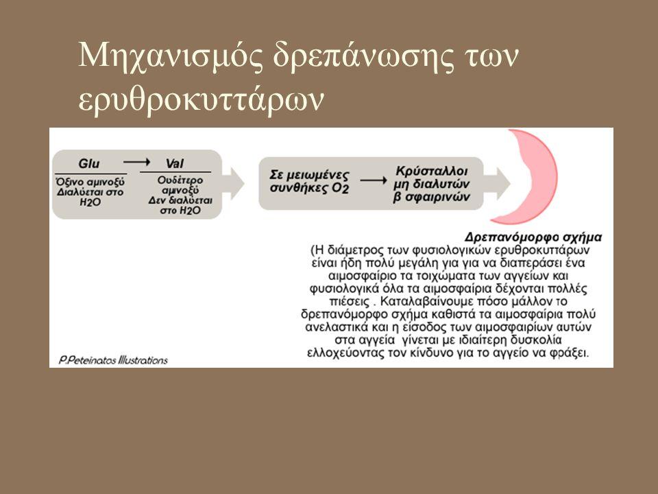 Μηχανισμός δρεπάνωσης των ερυθροκυττάρων