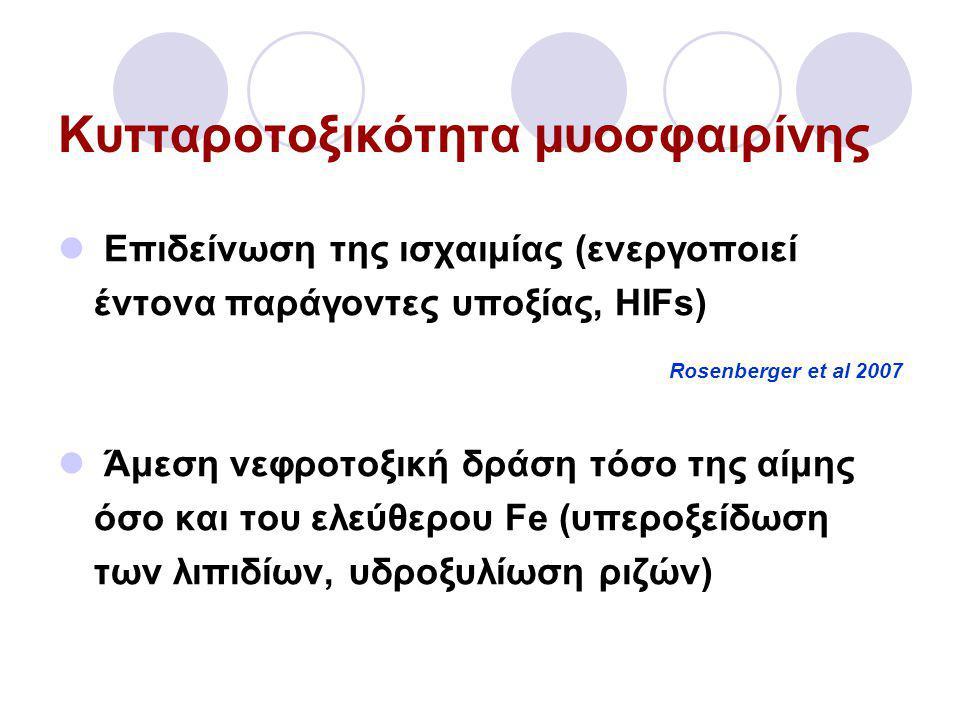 Κυτταροτοξικότητα μυοσφαιρίνης  Επιδείνωση της ισχαιμίας (ενεργοποιεί έντονα παράγοντες υποξίας, HIFs) Rosenberger et al 2007  Άμεση νεφροτοξική δράση τόσο της αίμης όσο και του ελεύθερου Fe (υπεροξείδωση των λιπιδίων, υδροξυλίωση ριζών)
