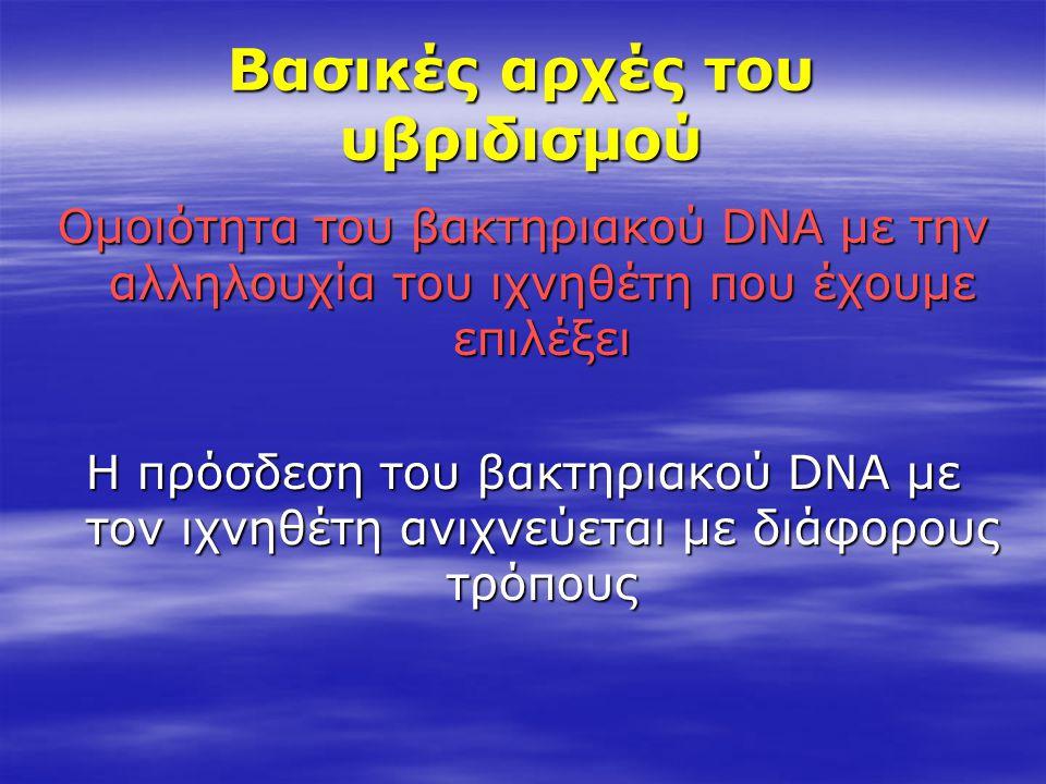Βασικές αρχές του υβριδισμού Ομοιότητα του βακτηριακού DNA με την αλληλουχία του ιχνηθέτη που έχουμε επιλέξει Η πρόσδεση του βακτηριακού DNA με τον ιχ