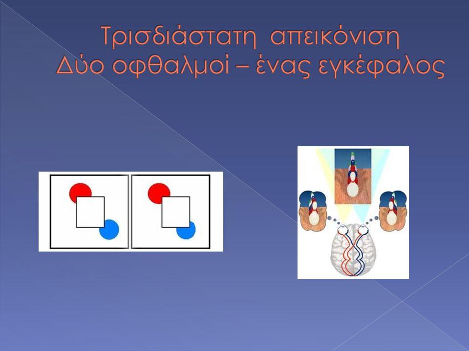  Λήψη στερεοσκοπικών εικόνων (Shooting)  Διαχείριση στερεοσκοπικών εικόνων (Mounting)  Παρατήρηση στερεοσκοπικών εικόνων (Viewing)