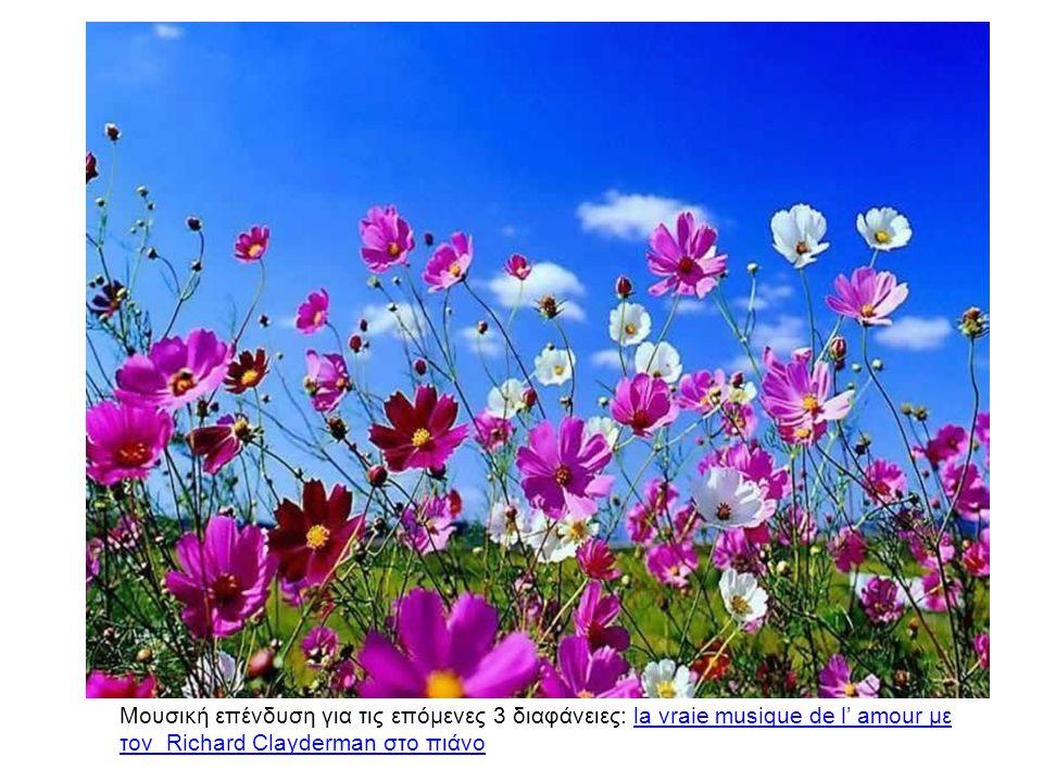 Μουσική επένδυση για τις επόμενες 3 διαφάνειες: la vraie musique de l' amour με τον Richard Clayderman στο πιάνοla vraie musique de l' amour με τον Ri