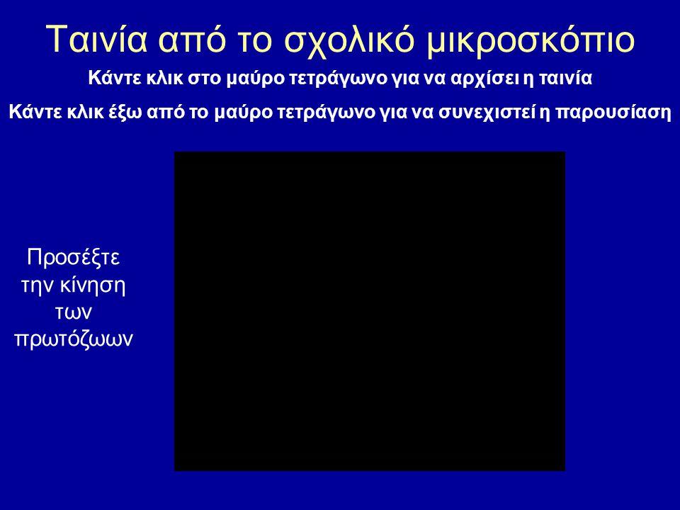 Κάντε κλικ στo μαύρο τετράγωνο για να αρχίσει η ταινία Κάντε κλικ έξω από το μαύρο τετράγωνο για να συνεχιστεί η παρουσίαση Προσέξτε την κίνηση των πρ