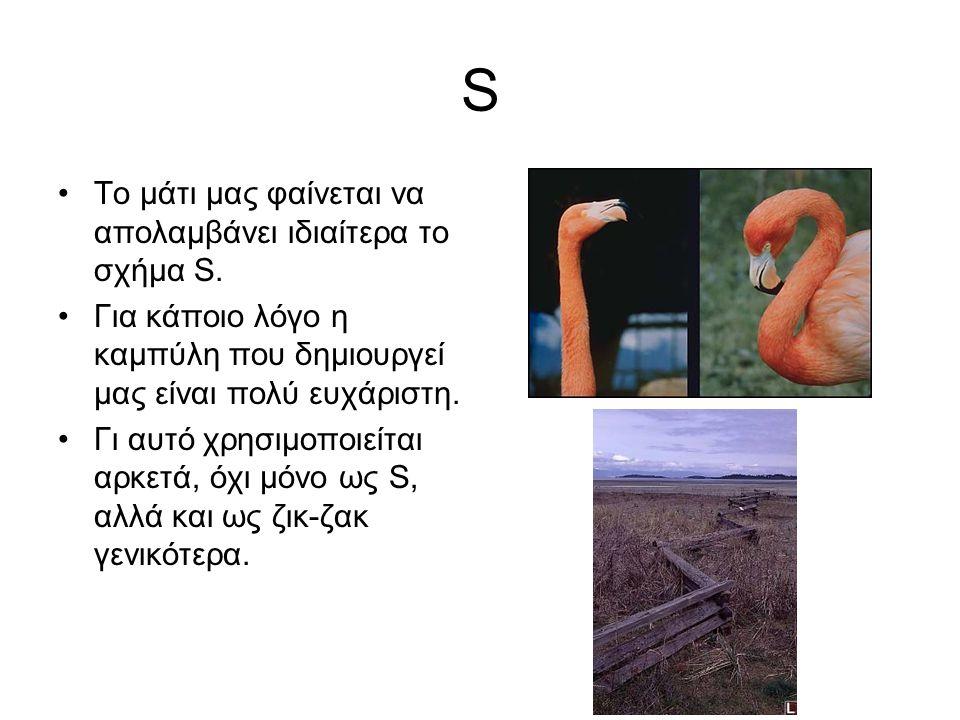 S •Το μάτι μας φαίνεται να απολαμβάνει ιδιαίτερα το σχήμα S. •Για κάποιο λόγο η καμπύλη που δημιουργεί μας είναι πολύ ευχάριστη. •Γι αυτό χρησιμοποιεί