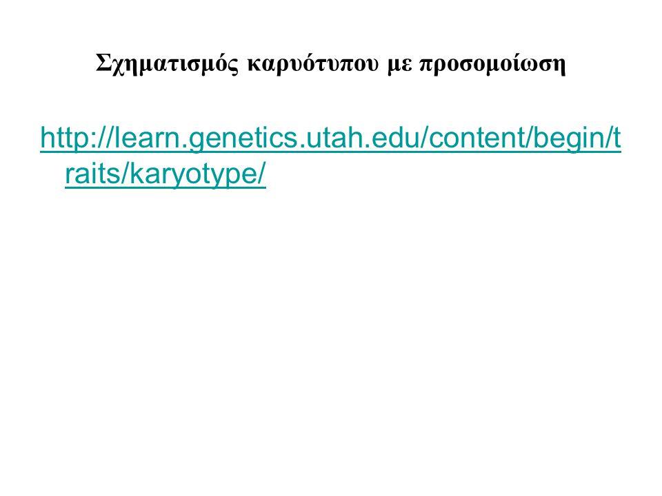 Σχηματισμός καρυότυπου με προσομοίωση http://learn.genetics.utah.edu/content/begin/t raits/karyotype/