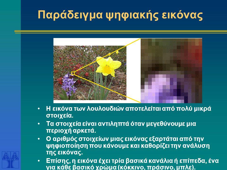 Παράδειγμα ψηφιακής εικόνας •Η εικόνα των λουλουδιών αποτελείται από πολύ μικρά στοιχεία. •Τα στοιχεία είναι αντιληπτά όταν μεγεθύνουμε μια περιοχή αρ