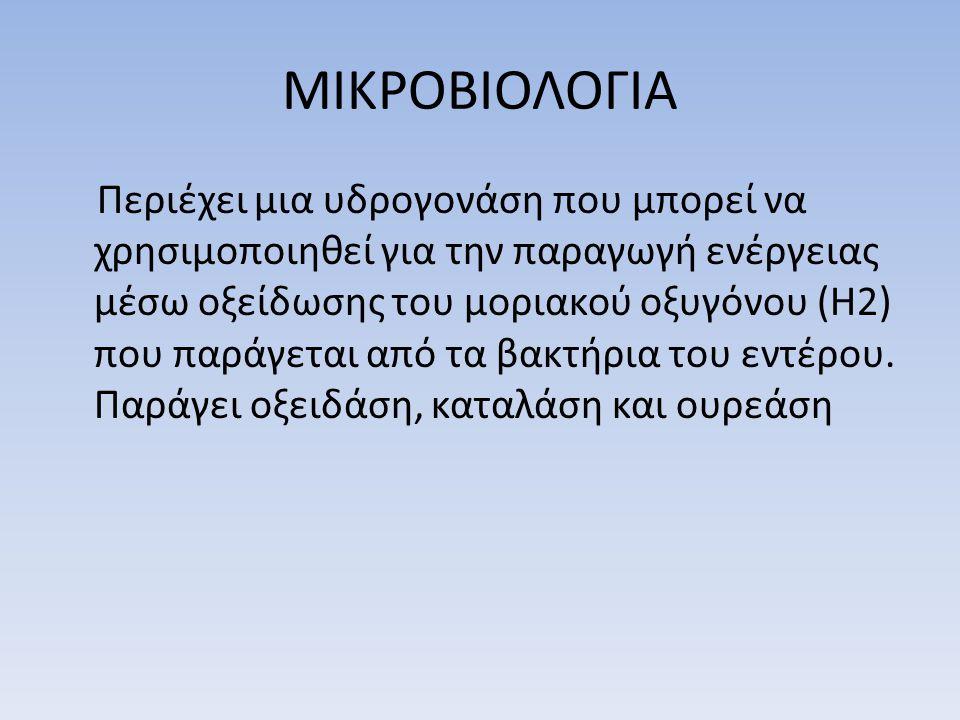 ΜΙΚΡΟΒΙΟΛΟΓΙΑ Περιέχει μια υδρογονάση που μπορεί να χρησιμοποιηθεί για την παραγωγή ενέργειας μέσω οξείδωσης του μοριακού οξυγόνου (Η2) που παράγεται από τα βακτήρια του εντέρου.