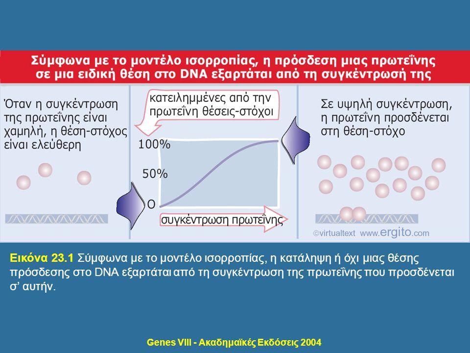 Εικόνα 23.1 Σύμφωνα με το μοντέλο ισορροπίας, η κατάληψη ή όχι μιας θέσης πρόσδεσης στο DNA εξαρτάται από τη συγκέντρωση της πρωτεΐνης που προσδένεται