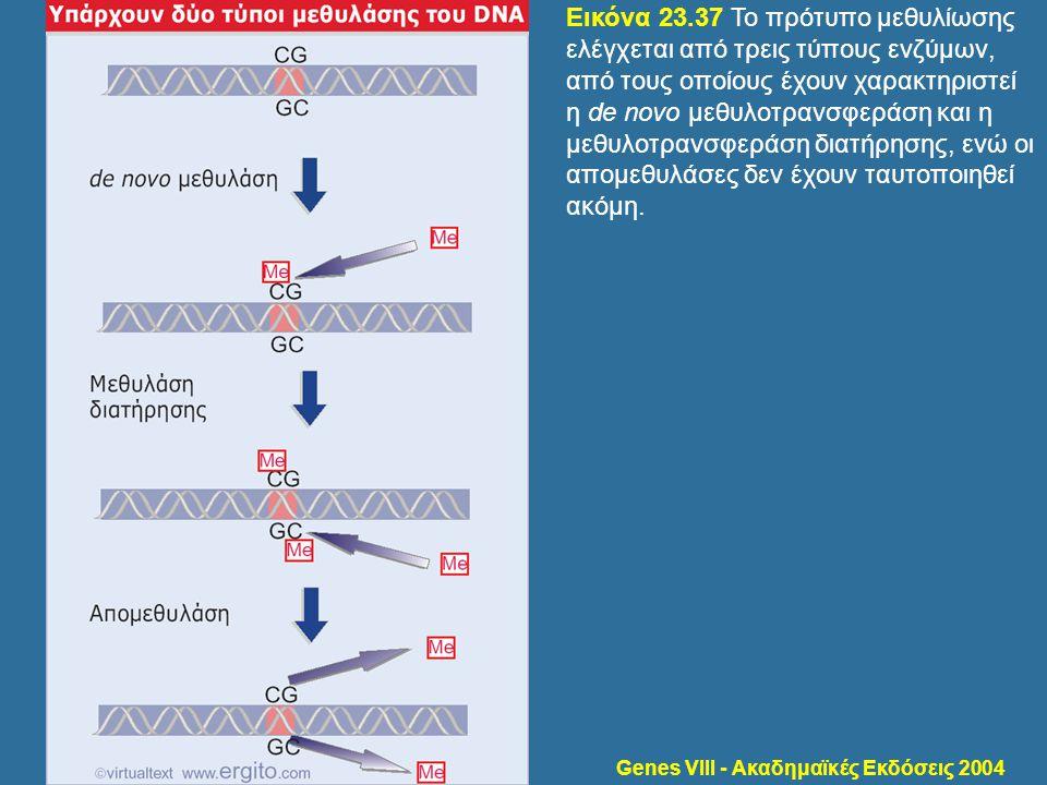 Genes VIII - Ακαδημαϊκές Εκδόσεις 2004 Εικόνα 23.37 Το πρότυπο μεθυλίωσης ελέγχεται από τρεις τύπους ενζύμων, από τους οποίους έχουν χαρακτηριστεί η d