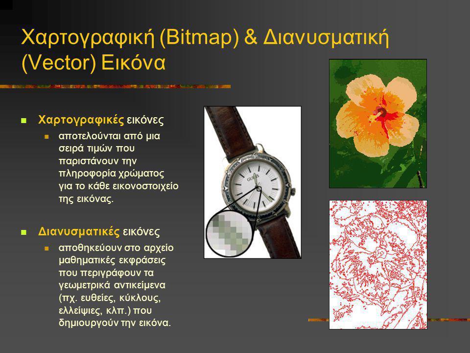 Χαρτογραφική (Bitmap) & Διανυσματική (Vector) Εικόνα  Χαρτογραφικές εικόνες  αποτελούνται από μια σειρά τιμών που παριστάνουν την πληροφορία χρώματο