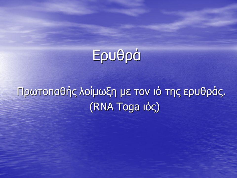 Ερυθρά Πρωτοπαθής λοίμωξη με τον ιό της ερυθράς. (RNA Toga ιός) (RNA Toga ιός)