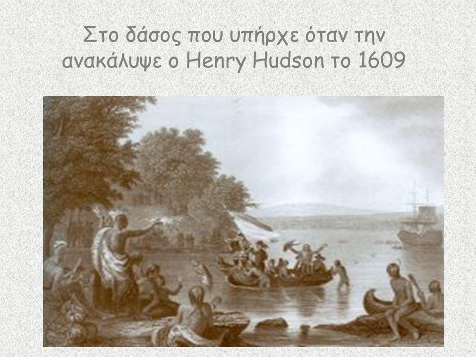Στο δάσος που υπήρχε όταν την ανακάλυψε ο Henry Hudson το 1609