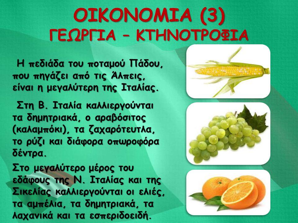 ΟΙΚΟΝΟΜΙΑ (3) ΓΕΩΡΓΙΑ – ΚΤΗΝΟΤΡΟΦΙΑ Στο μεγαλύτερο μέρος του εδάφους της Ν. Ιταλίας και της Σικελίας καλλιεργούνται οι ελιές, τα αμπέλια, τα δημητριακ