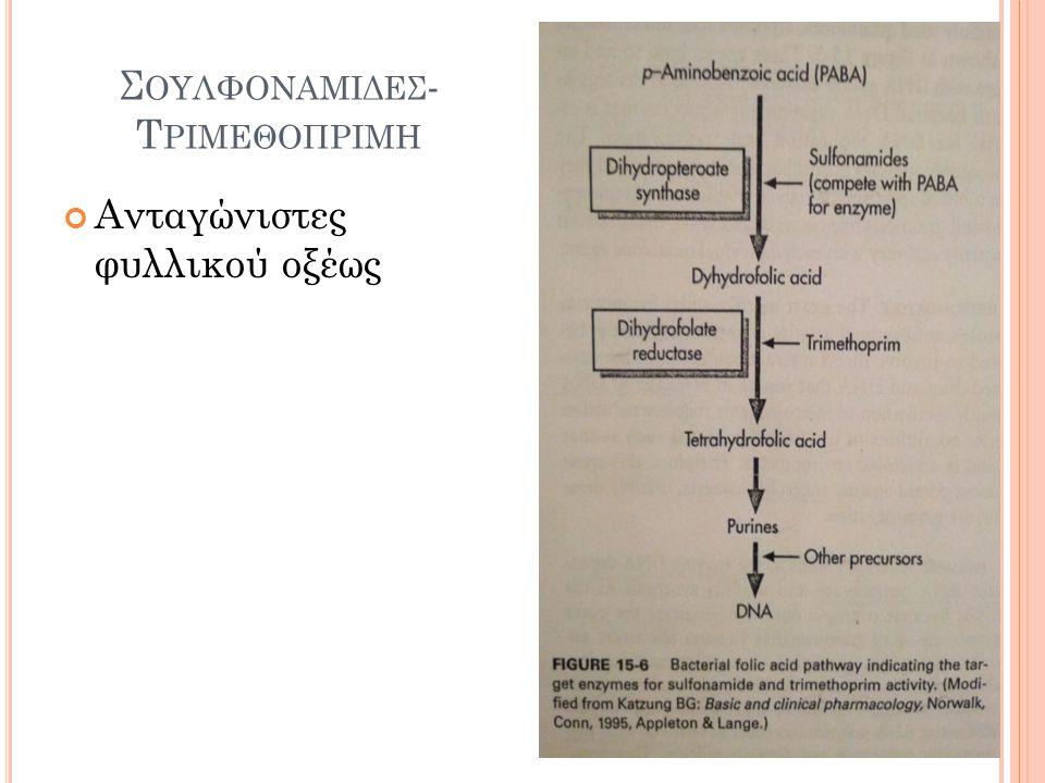 Φ ΘΟΡΙΟΚΙΝΟΛΟΝΕΣ 1. Γυράση DNA (υπερελίκωση DNA) ). 2. Τοποϊσομεράση IV (αποπεριελιξη DNA) Αντιγραφή DNA Τοποϊσομεράση IV Κινολόν ες DNA γυράση Μεταγρ