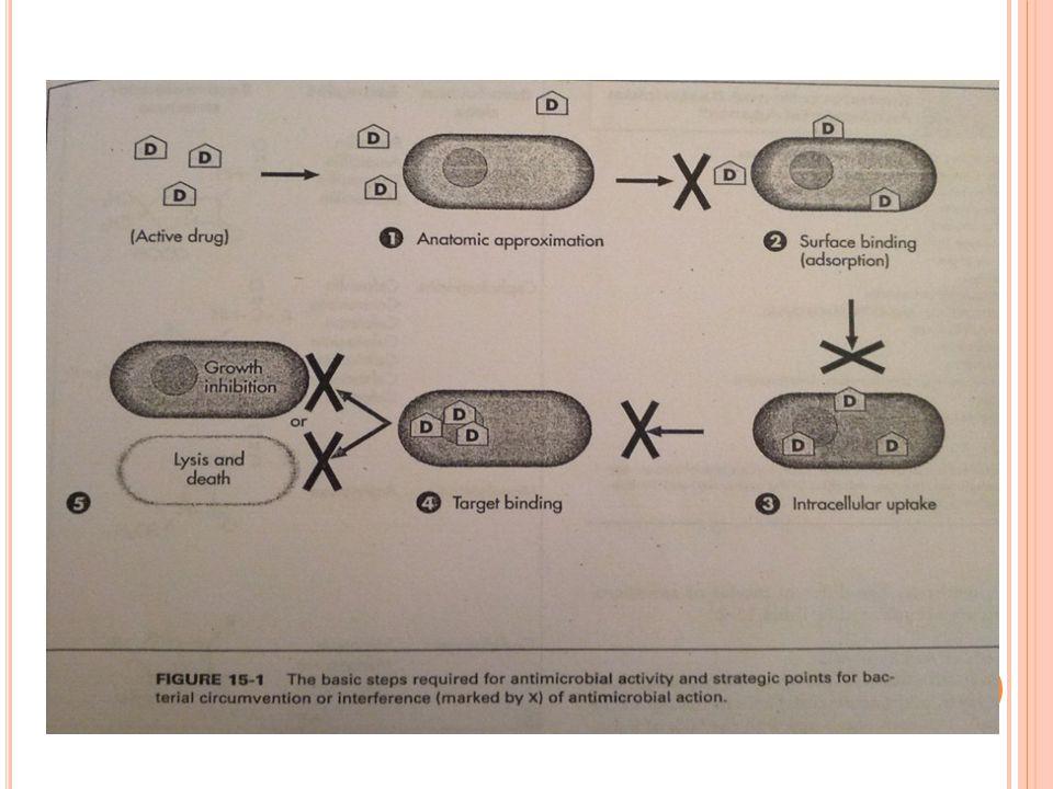 Β- λακταμικά αντιβιοτικα  Πενικιλίνες  Κεφαλοσπορίνες  Καρβαπενέμες  Μονοβακτάμες Μακρολίδες  Αζιθρομυκίνη  Κλαριθρομυκίνη  Ερυθρομυκίνη  Τελι