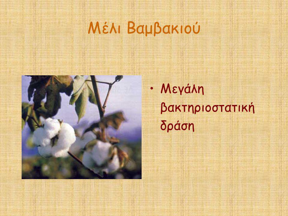 Μέλι Βαμβακιού •Μεγάλη βακτηριοστατική δράση