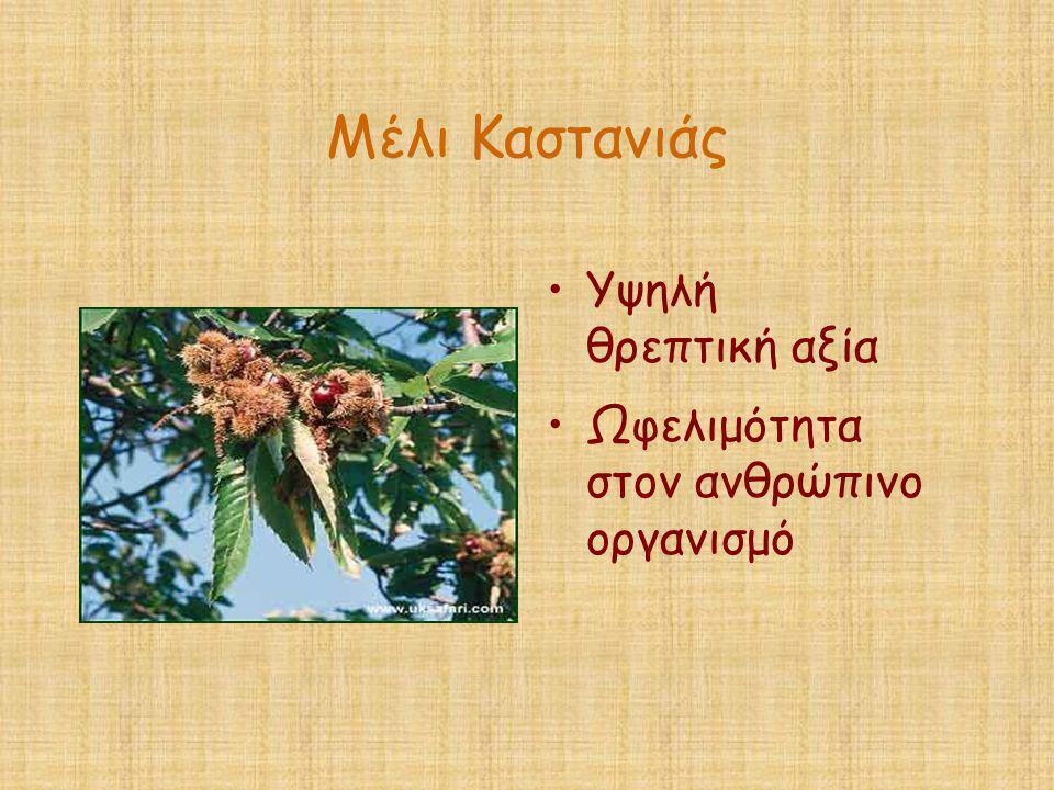 Μέλι Καστανιάς •Υψηλή θρεπτική αξία •Ωφελιμότητα στον ανθρώπινο οργανισμό